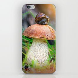 Leccinum on grass with snail iPhone Skin