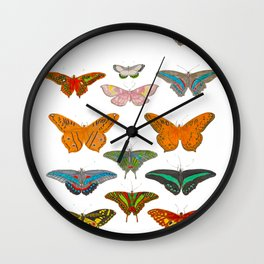 Vintage Scientific Illustration Of Colorful Butterflies Wall Clock