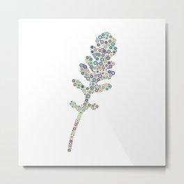 Eruca sativa (arugula) leaf Metal Print