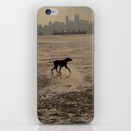 Dog playing at the beach, Vancouver, Canada landscape iPhone Skin