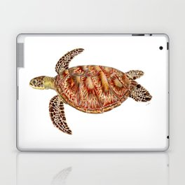Green turtle Chelonia mydas Laptop & iPad Skin
