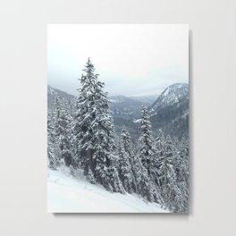 PNW Snow Day Metal Print