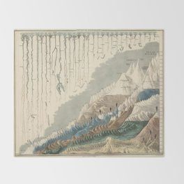 1854 Comparative Lengths of Rivers and Heights of Mountains Throw Blanket