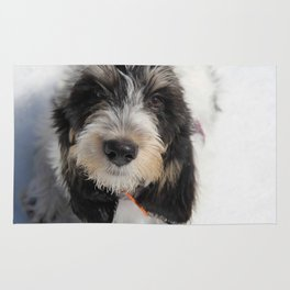 GBGV Puppy with Attitude Rug