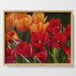 tulip flower in spring in the garden Serving Tray