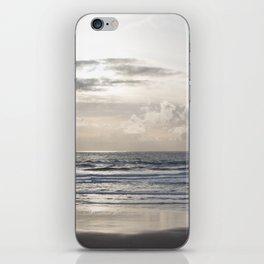Silver Scene iPhone Skin