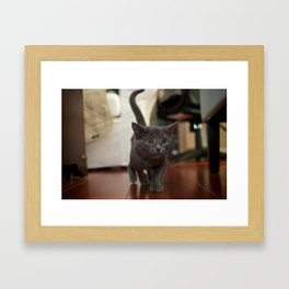 My, what Big Eyes you have... Framed Art Print