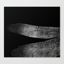 the dragonfly's wings 03 Canvas Print