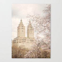 Central Park Blossom #2 Canvas Print