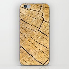 Cut Wood Trunk and Grain pattern iPhone Skin