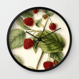 Vintage Raspberry Illustration Wall Clock