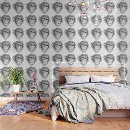 A Chimpanzee :: Not Monkeying Around Wallpaper
