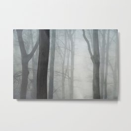 absolute silence Metal Print