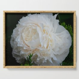 Champagne Peony by Teresa Thompson Serving Tray
