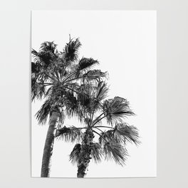 B&W Palm Tree Print | Black and White Summer Sky Beach Surfing Photography Art Poster