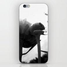 Mountain Climber iPhone & iPod Skin