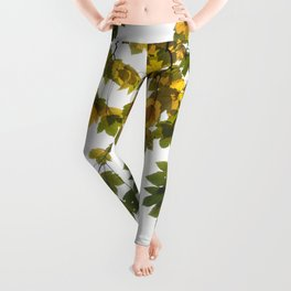Green And Yellow Maple Leaf Leggings