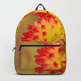 Dahlia Abstract Backpack