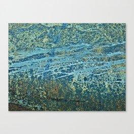 Rustic Pattern Canvas Print