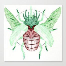 Thorned Atlas Beetle Canvas Print