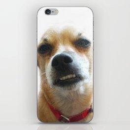 Quiero iPhone Skin