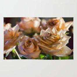 Rose Glow Rug