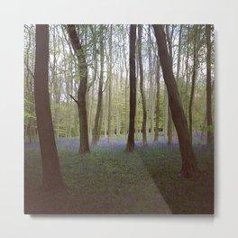 Bluebell Woods - Aldbury Common Metal Print