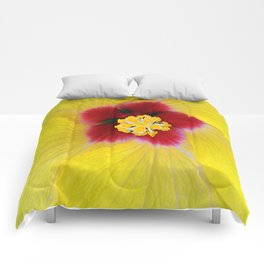 Yellow flower ## Comforters