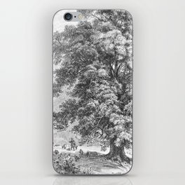 Linden Tree Print from 1800's Encyclopedia iPhone Skin