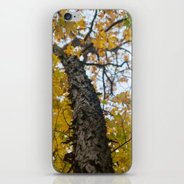 Autumn in the Catskill Mountains iPhone Skin