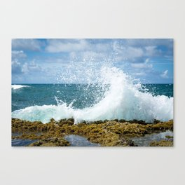 Wave of summer Canvas Print