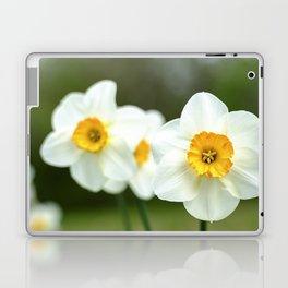 spring_2 Laptop & iPad Skin