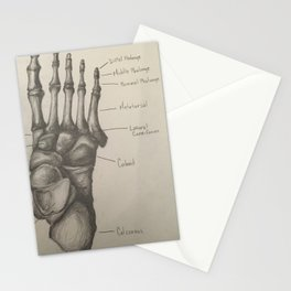 Bones of the Foot Stationery Cards