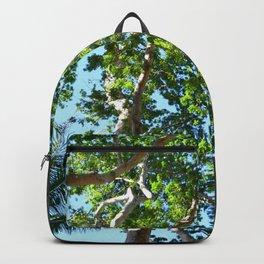Photo 45 Backpack