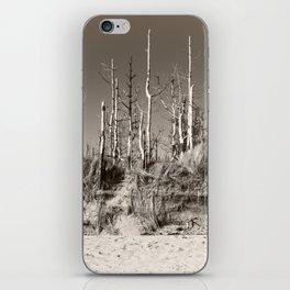 Dead Trees On The Beach iPhone Skin
