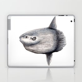 Ocean Sunfish (Mola mola) Laptop & iPad Skin