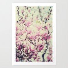 Purple Magnolia Blossoms Spring Botanical Art Print