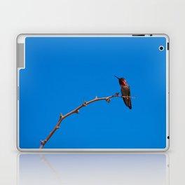 Beautiful Hummer - II Laptop & iPad Skin