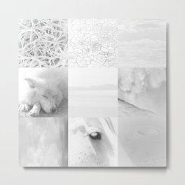 Wyoming White On White Metal Print