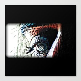 False Memories Canvas Print