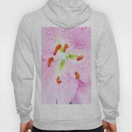 Pink Oriental Lily Hoody