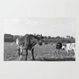 Cow Field Rug