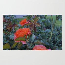 Portland Coral Roses Rug