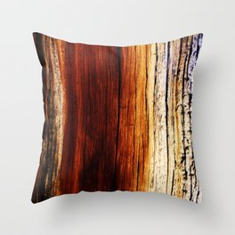 Lightning Struck Throw Pillow