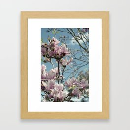 Glorious Magnolias Framed Art Print