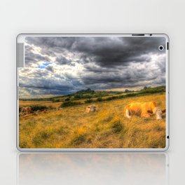 The Resting Cows Laptop & iPad Skin