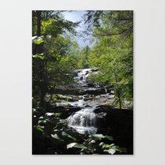 Glendale Falls Canvas Print