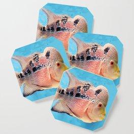 Aquarium Fish Coaster