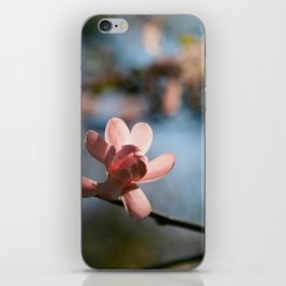 Dreaming of Spring iPhone Skin