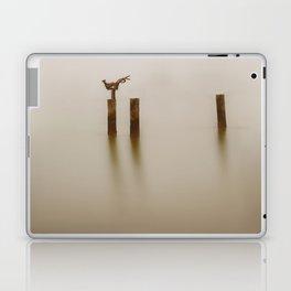 A Sculpture Laptop & iPad Skin
